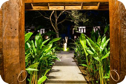 Meditation Retreat in Thailand
