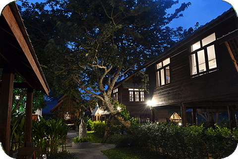 Library in Wellness Nature Retreat – Thailand