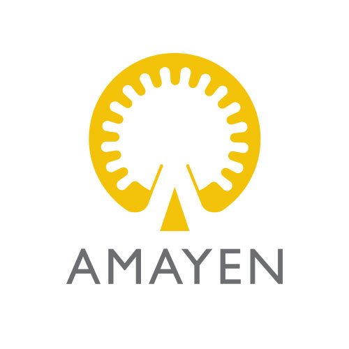 The AMAYEN Evolution